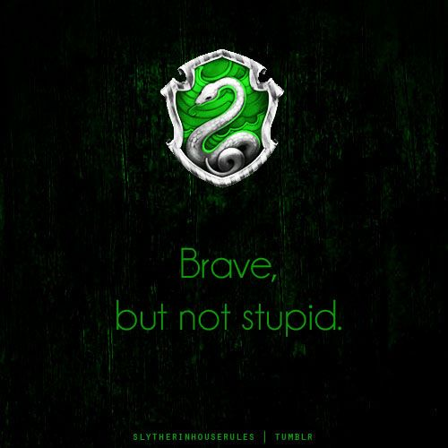 Slytherin House Pride. This sets us apart from the Gryffindors. Brave, without being reckless. Loyal, but not easily forgiving.