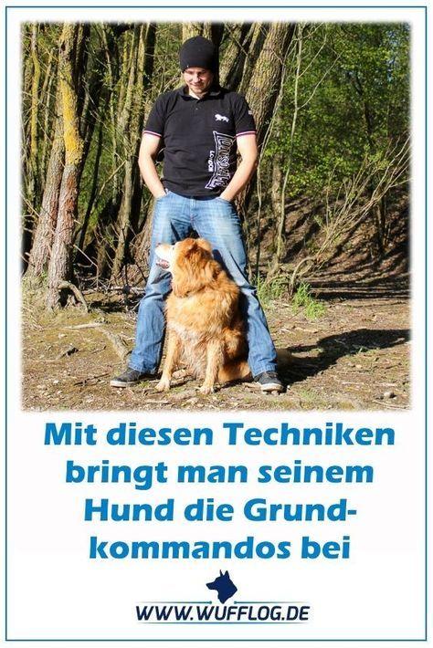 Wie motiviere ich meinen Hund und welche Gedanken muss ich mir eigentlich vor dem Training machen? Eine häufig gestellte Frage! Wie lernt mein Hund eigentlich ein bestimmtes Kommando?