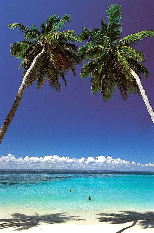 Dominican Republic I have been to this beach one of the best places I have ever been.