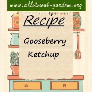 Recipe for Gooseberry Ketchup. Delicious with strong meats like venison, game birds or duck. It even spices up a humble beef burger at the barbecue.