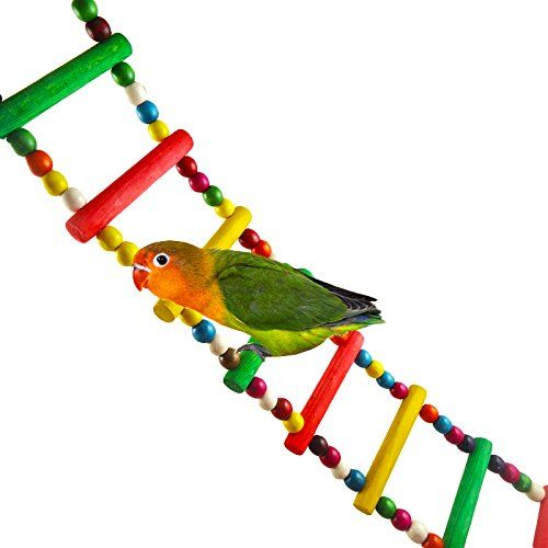 Pawliss Flexible Parrots Bird Toy Wood Ladder Rainbow Colorful * Want to know more, click on the image.Note:It is affiliate link to Amazon.