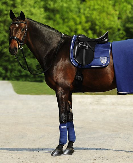 The Hubertus Schmidt Dressage Saddle has been developed in collaboration with the German Team Olympic Gold Medalist Hubertus Schmidt. This version with wide thigh supports helps the rider to keep his leg even more securely in position.