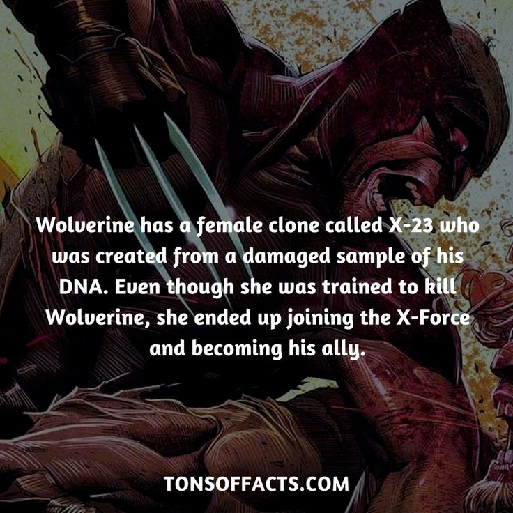 He has a female clone called X-23 who was created from a damaged sample of his DNA. Even though she was trained to kill Wolverine, she ended up joining the X-Force and becoming his ally.  #wolverine #xmen #comics #marvel #interesting #fact #facts #trivia #superheroes #memes #1