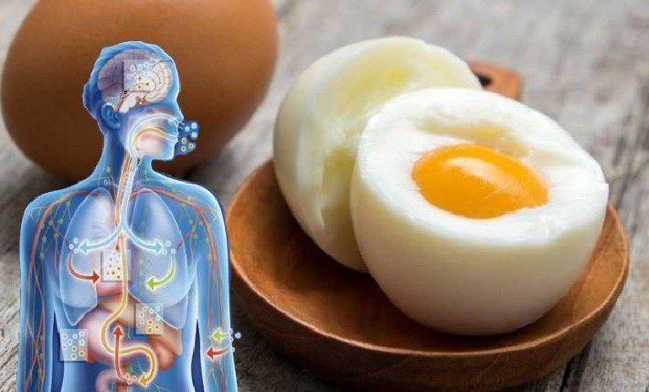Prečo sú vajíčka zabijakmi tuku | Mega chudnutie