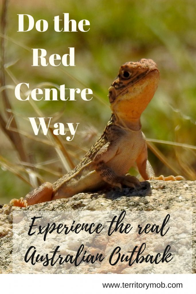 Do the Red Centre Way - the real Australian Outback — Territory Mob