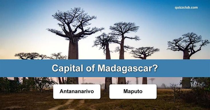 Geography Quiz Test: How Well do You Know the Capitals of the World?