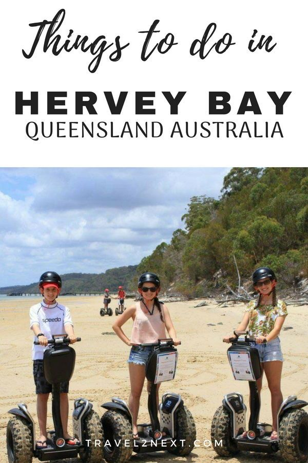 10 Things To Do In Hervey Bay For Kids Hervey Bay Things To Do Stuff To Do