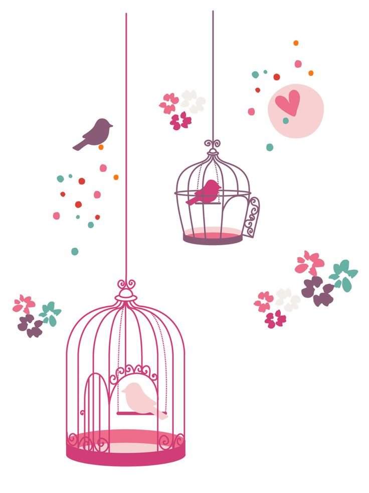 Stickers fille th me paradise bird chambre b b d co - Sticker chambre bebe fille ...