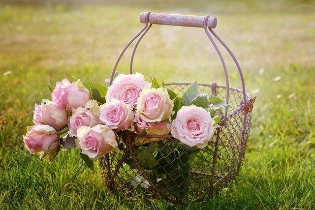 Prezent Dla Dziewczyny Dla Niej Na Dzien Kobiet Walentynki Urodziny Flower Delivery Beautiful Flowers Pink Roses