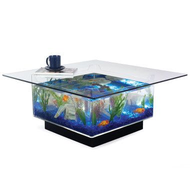 """Aquarium Coffee Table  15 or 25 gal.  1/4"""" beveled tempered glass top is removable. sits on illuminating base"""