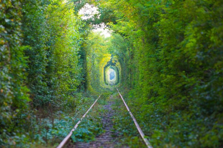 The Tunnel Of Love - Romania
