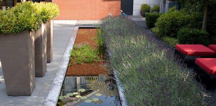 Relax tuin in Capelle aan den IJssel I Martin Veltkamp Tuinen