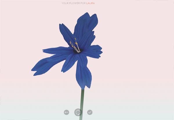 Love flower. (see blog)