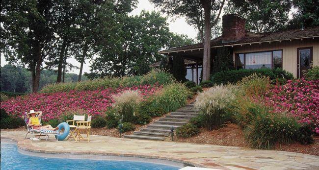 hangbepflanzung rosen rindenmulch gr ser stufen lampenputzergras du und dein garten. Black Bedroom Furniture Sets. Home Design Ideas