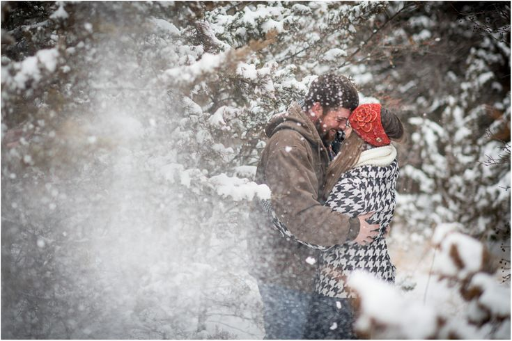 treeeeeees and snow