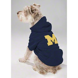 480 Best Schnauzers In Clothes Costumes Images On