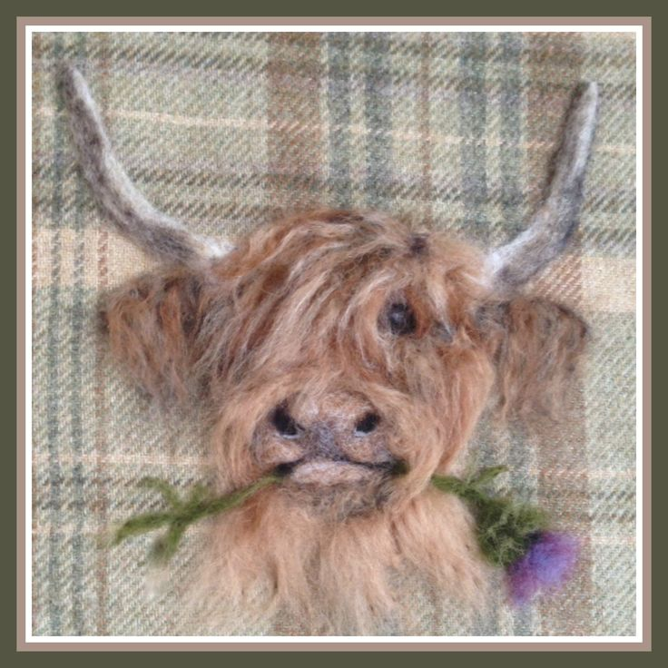 Needle felted Highland cow picture