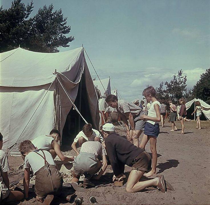 1960 - Rügen. Urlaub an der Ostsee, Zeltplatz  ~~~~ Quelle: Deutsche Fotothek, Bild df_ld_0003056_001a Lizenz: Creative Commons