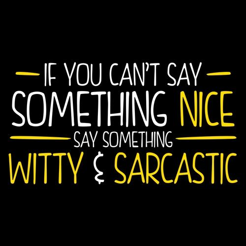 IF YOU CAN'T SAY SOMETHING NICE, SAY SOMETHING WITTY & SARCASTIC T-SHIRT