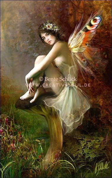 Bente Schlick:  The Striped Wing Fairy