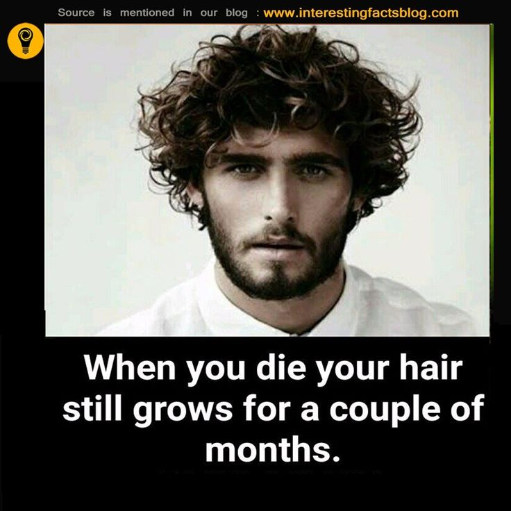 How Long Does Your Hair Grow After You Die..?
