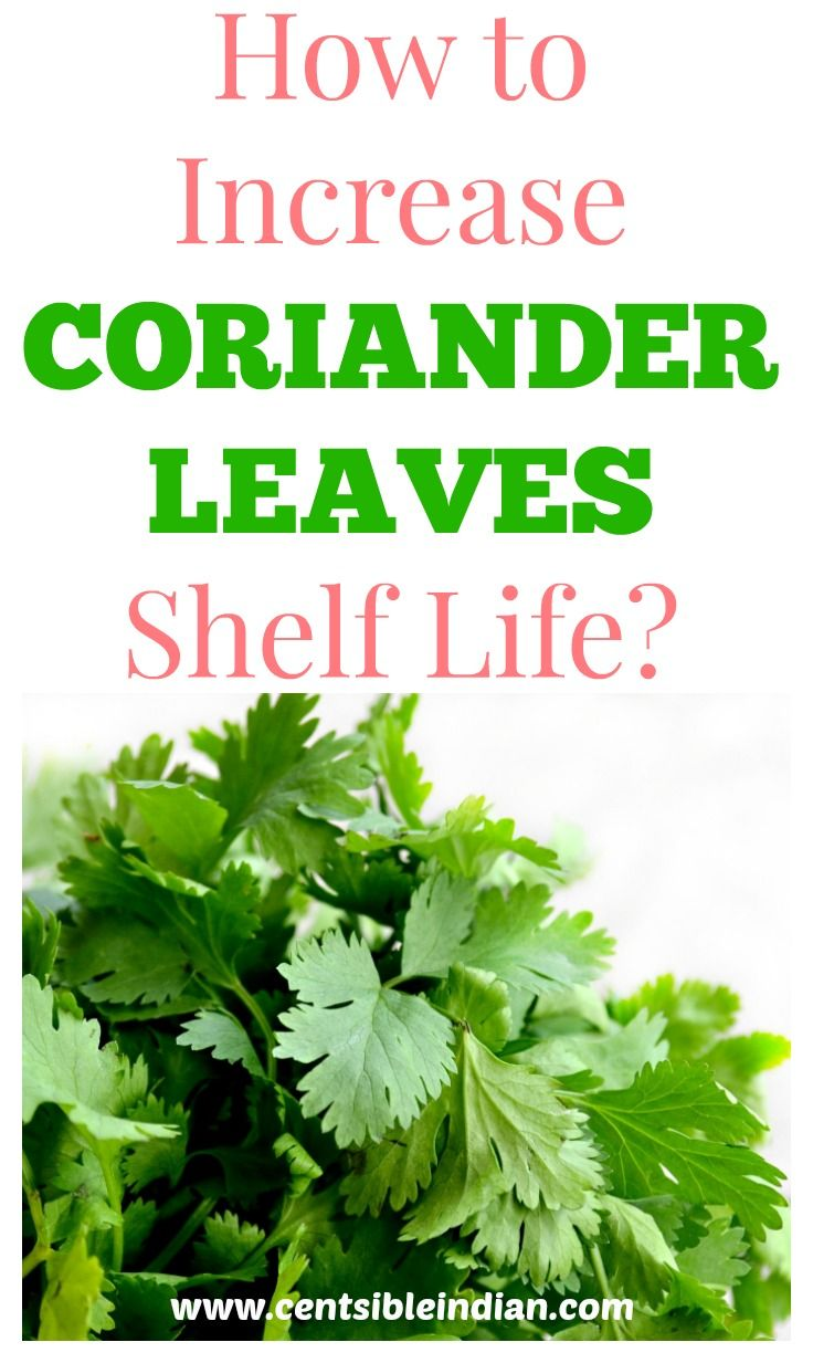 Try these 2 ideas to increase the shelf life of coriander leaves. These are super easy to follow and avoids wasting the coriander leaves.  #tips #indiancooking