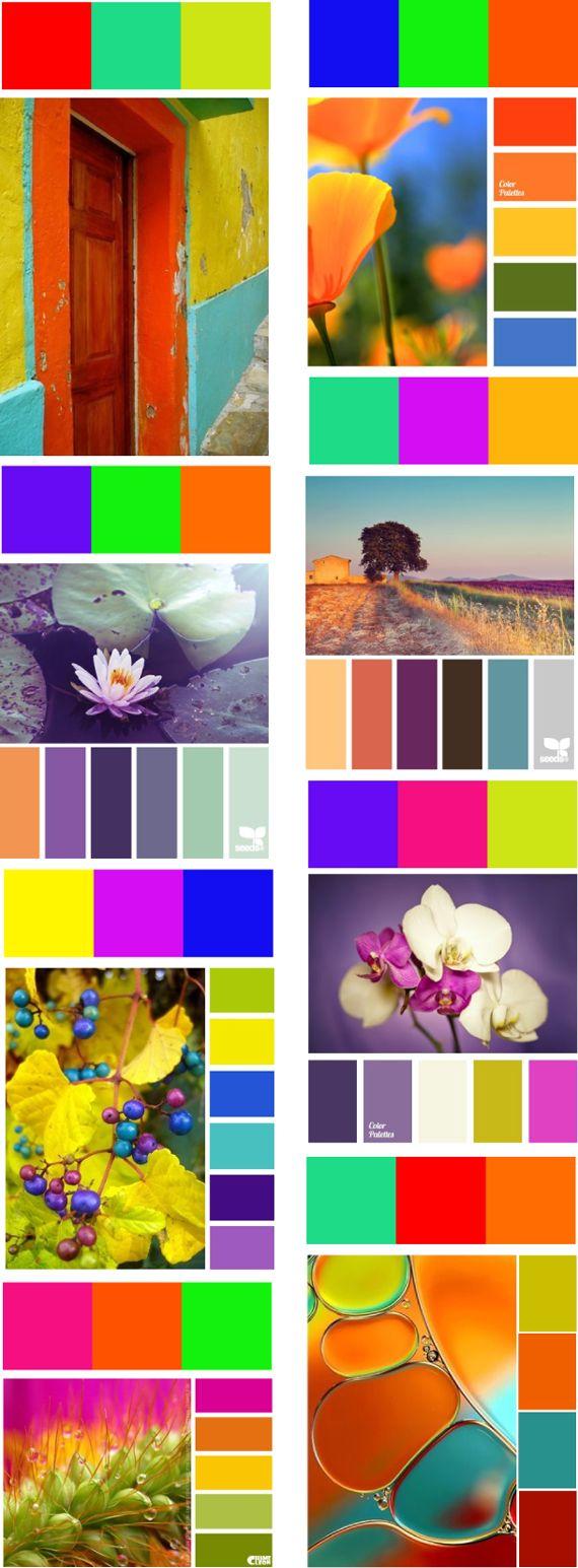 ❤ =^..^= ❤    Комбинация цвета