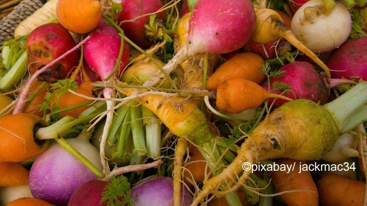 Kleine, schmackhafte Kraftprotze aus dem Mikrogarten