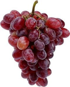 Boat Food Ideas - If you Freeze the grapes the night before going out on the boat you can Save room in the cooler.  These will thaw by the time you are ready to eat them!