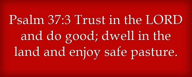 17 Best Ideas About Psalm 37 On Pinterest