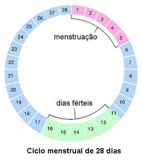 http://www.maetipoeu.com.br/maes/como-calcular-o-periodo-fertil/