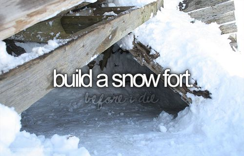 .: Snowfort, Buckets Lists With Kids, Winter Time, The Bucketlist, Childhood Memories, Before I Die, Snow Forts, Bucket Lists, Winter Buckets Lists