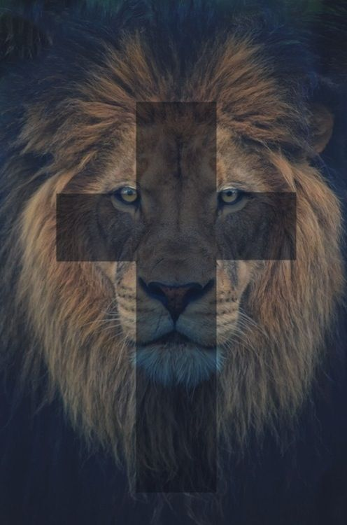 The wicked flee when no one pursues, but the righteous are bold as a lion. Proverbs 28:1