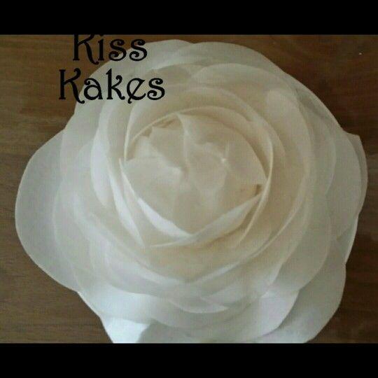 Wafer rose