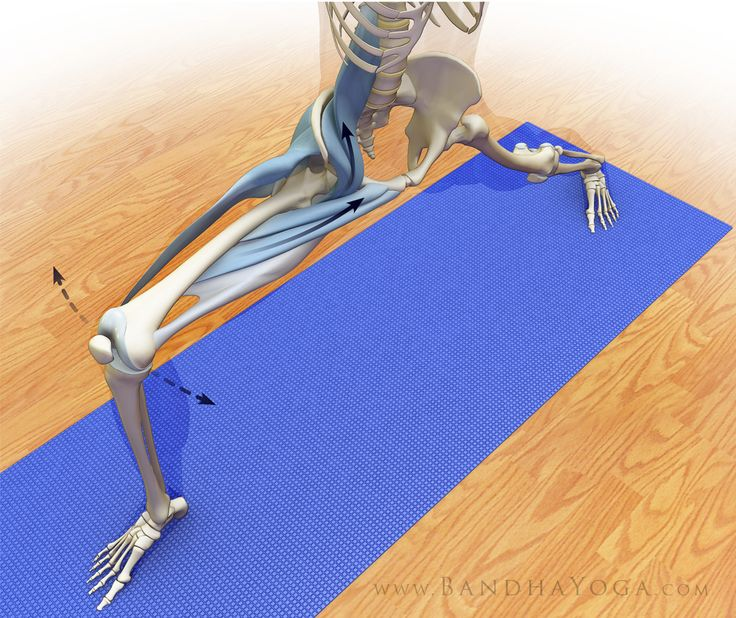 The Daily Bandha: Preventing Yoga Injuries vs Preventing Yoga, Part III: Joint Mobility, Stability and Proprioception