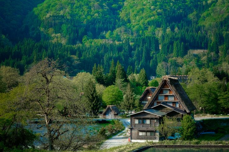 """Shirakawa-go in the green"" This place is Shirakawa-go in north of Gifu Japan"
