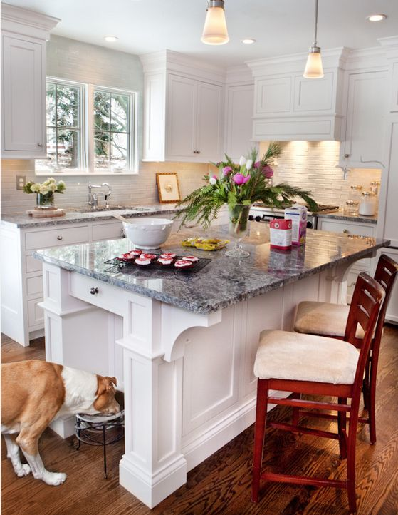 10 Things Every Dog Owner Should Have in Their Home