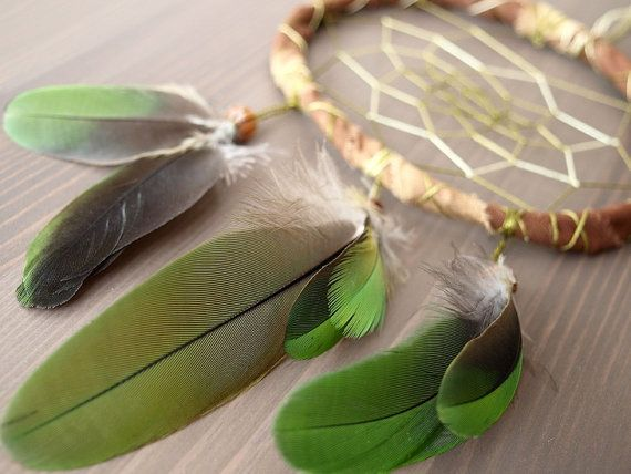 Dream Catcher - Exotic Green - With Green Parrot Feathers, Transitional Brown Frame and Green Nett - $25 (Could be a cool DIY idea - make a dream catcher with Ted feathers)