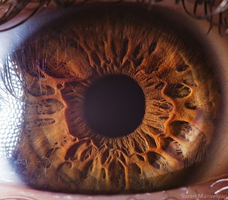 DANGEROUS MINDS | THE HUMAN EYE AS YOUVE NEVER SEEN IT BEFORE