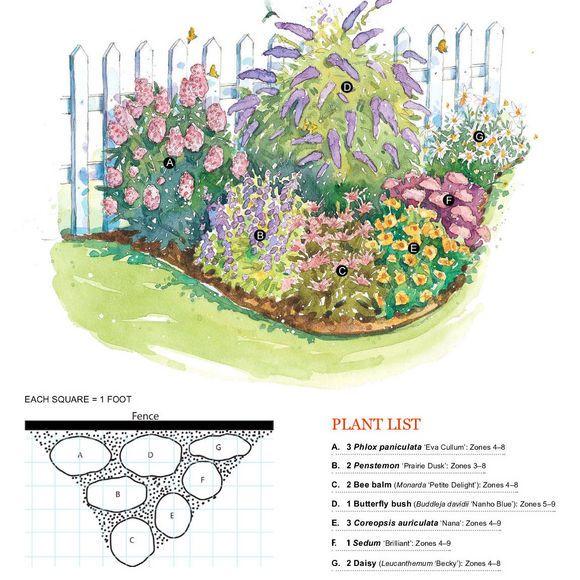 Butterfly Garden A 3 Phlox Paniculata 'Eva Culum' Zones 400 x 300