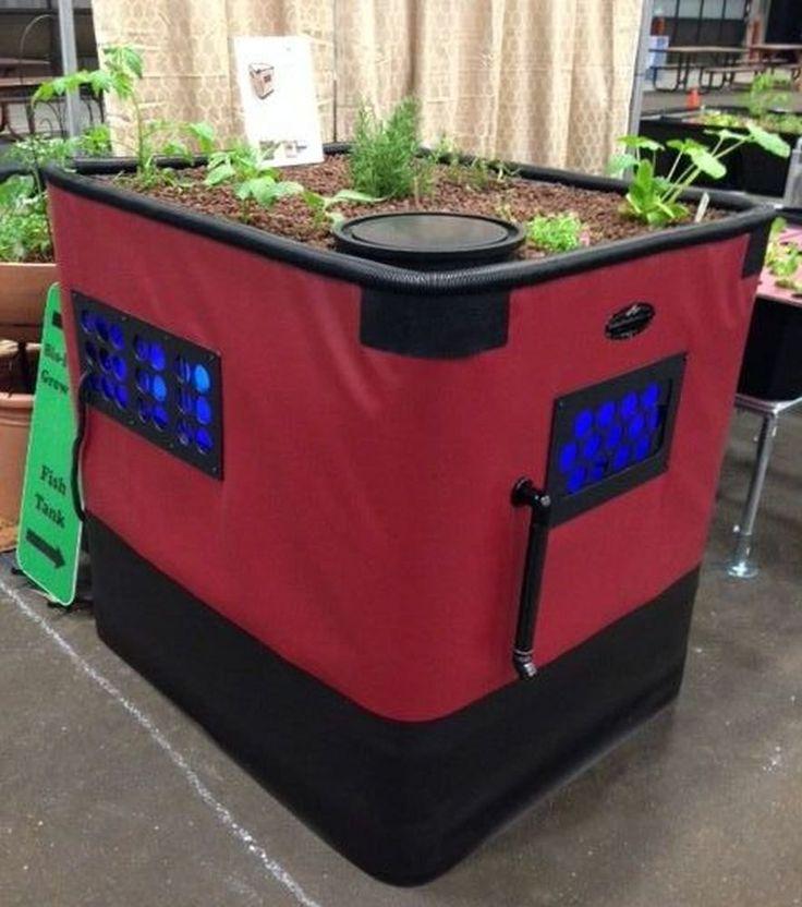 Amazon.com: Genesis G-12 Aquaponics System | Complete Kit Includes 12 Sq. Ft. Grow Bed, 140 Gallon Fish Tank, Pre Cut Plumbing, Pumps, Clay Pebbles: Patio, Lawn & Garden