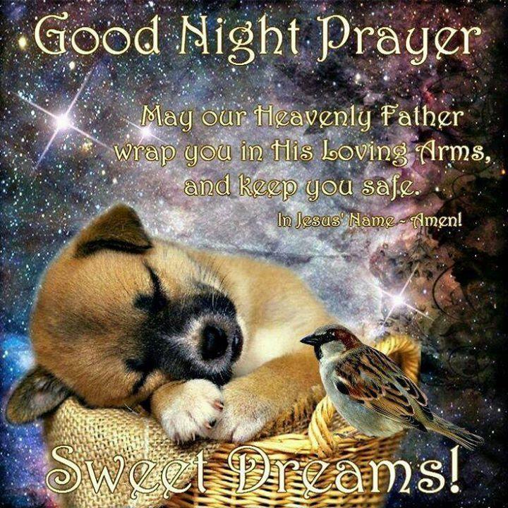 Cute Good Night Prayer prayer goodnight good night goodnight quotes goodnight quote goodnite