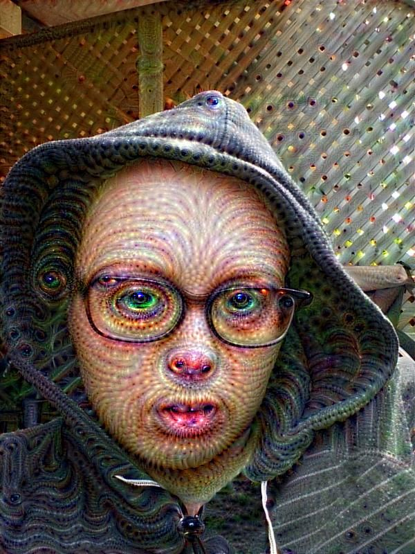 self transforming machine elves