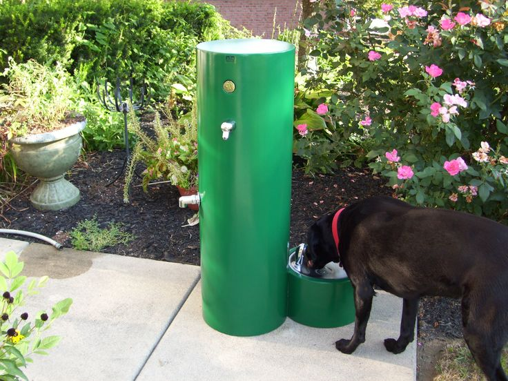24 Best Pet Drinking Fountains Images On Pinterest