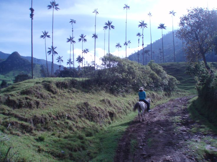 Riding a horse in el Valle del Cocora