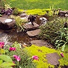 Stepping Stones to Traverse Your Pond