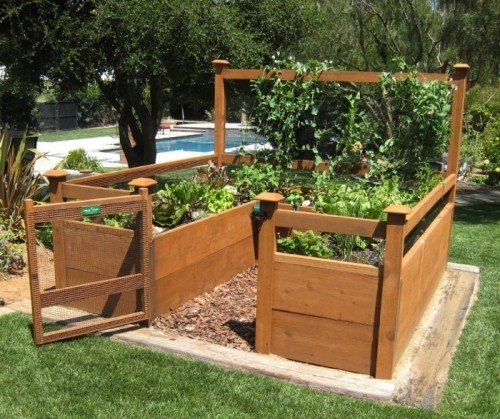 Kit includes everything but the lumber: 8 Raised bed brackets, netting for fencing and trellis, all required hardware and detailed instructions. Buy your own rough lumber locally (cedar or redwood) - see below for list of lumber required.Gated garden ...