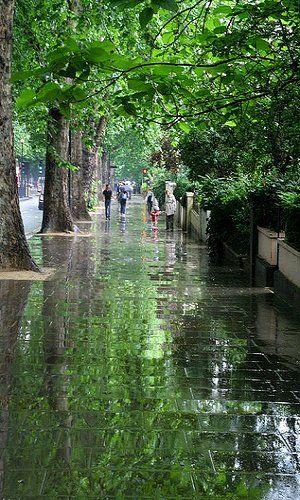 After the rain . Holland Park Avenue-.London