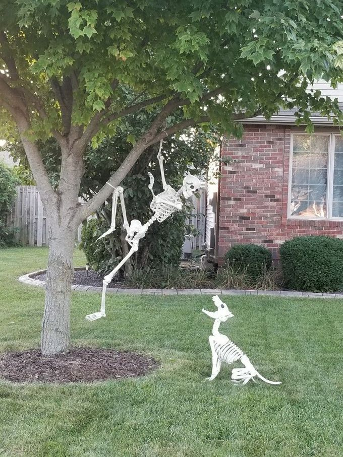 33+ Awesome Front Yard Halloween Decoration Ideas Trend in 2019