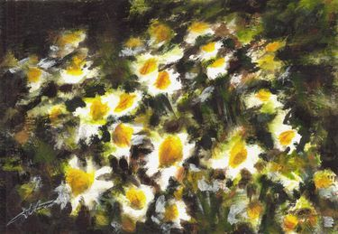 Camomile by Maga Fabler; gouache (inspired by Tanja Markiewicz's photography)